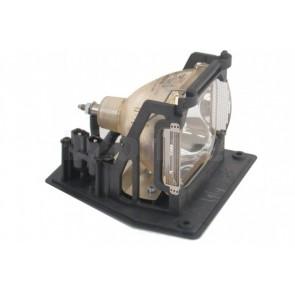 SP-LAMP-031